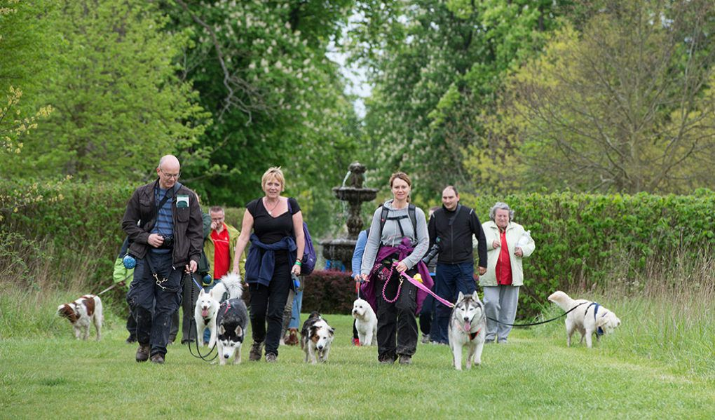 Hever Castle Venue Hire External Events Dogs