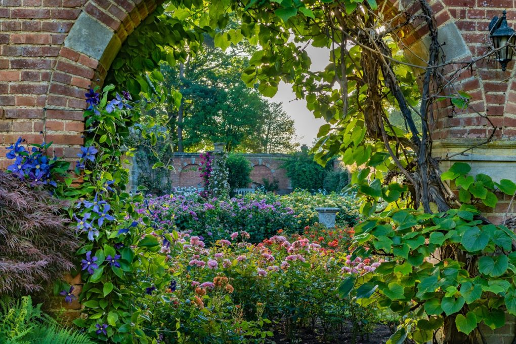 A glimpse into the Rose Garden at Hever Castle